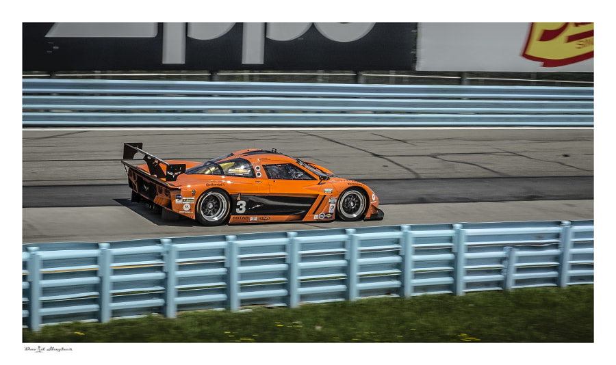 Rolex Corvette DP