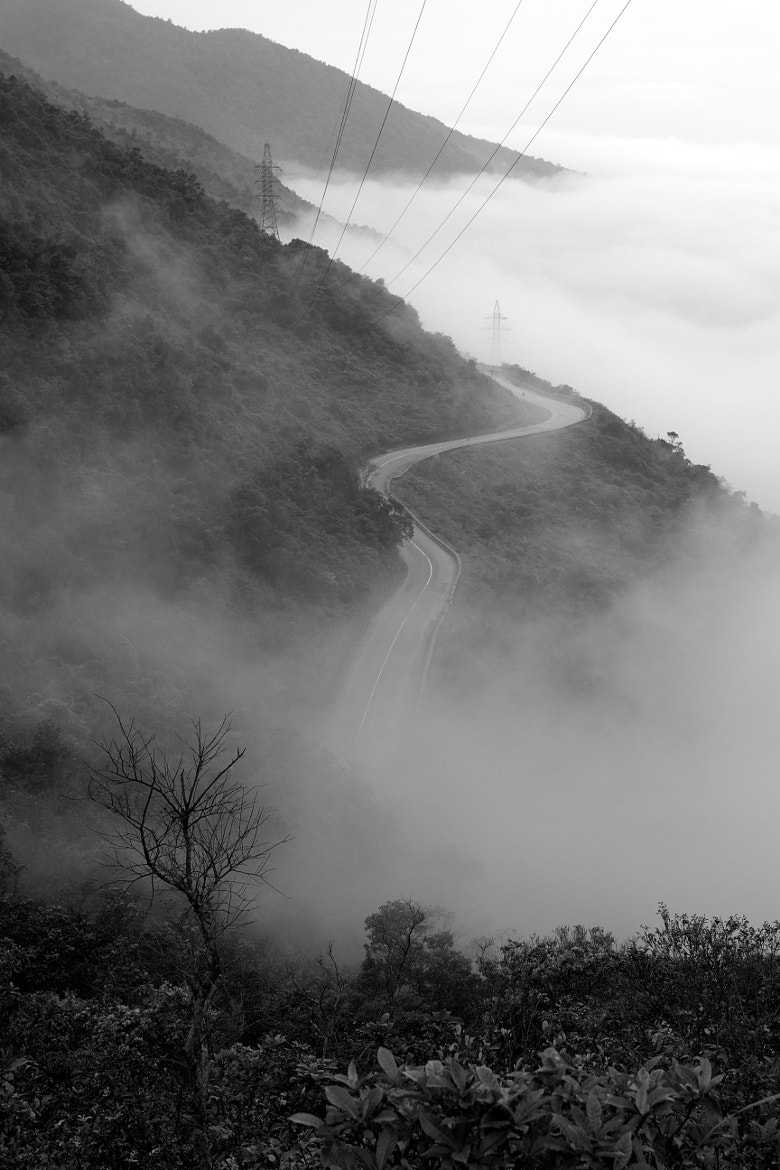 Photograph Long and winding road by Jinny Tan on 500px