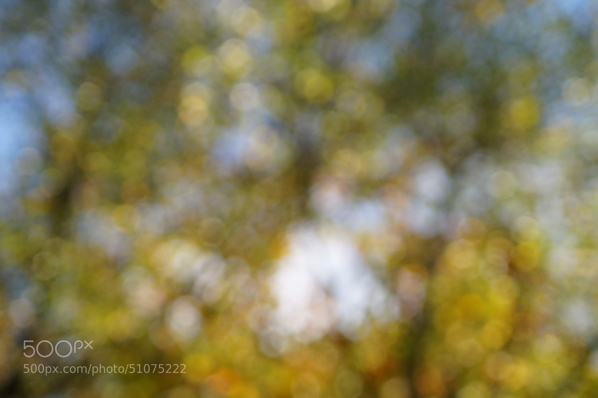 Photograph Autumn Bokeh 2 by Robin Jones on 500px
