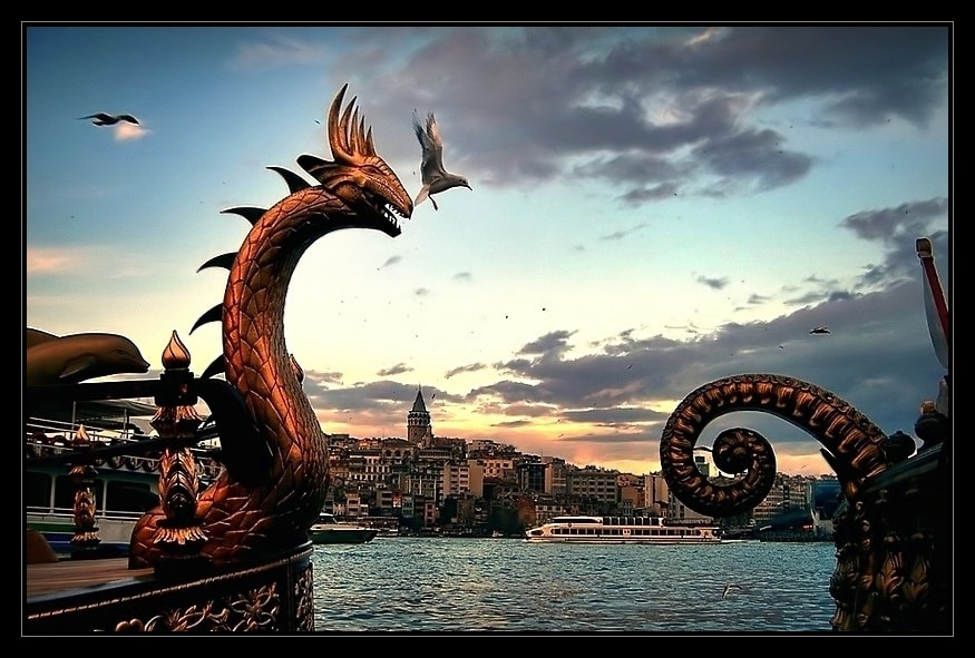 Photograph dragon by Levent Yersal on 500px