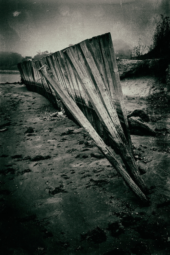 Photograph Wet Plate Moss Landing by Dayne Reast on 500px