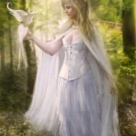 Peaceful Tidings by Phatpuppy Art (PhatpuppyArt)) on 500px.com