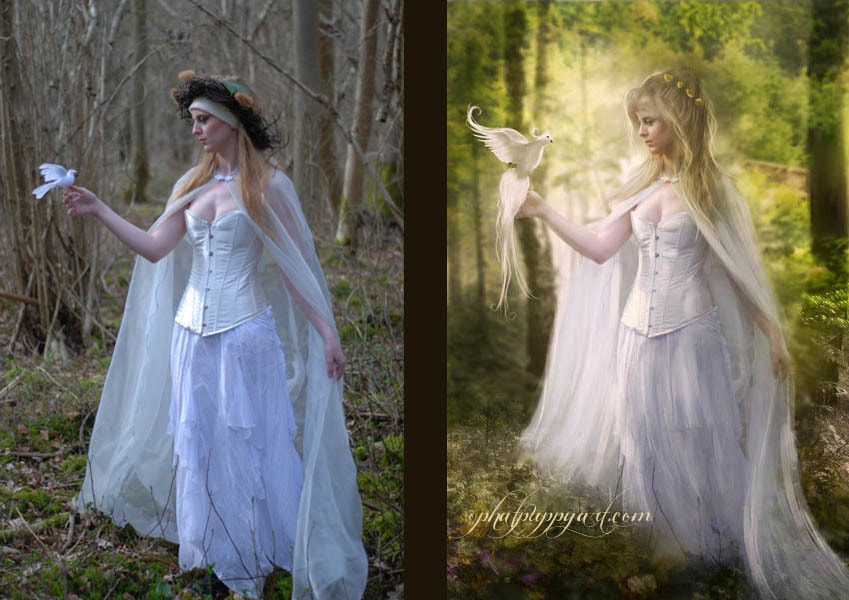 Photograph Before/After Peaceful Tidings by Phatpuppy Art on 500px