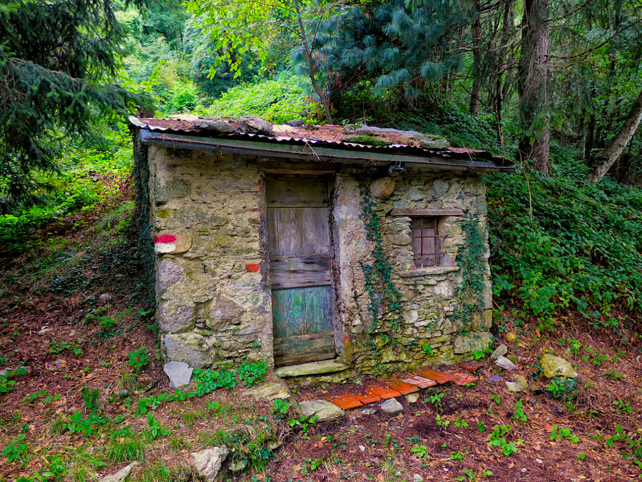 Photograph the house in the woods by Roberto Lotti on 500px