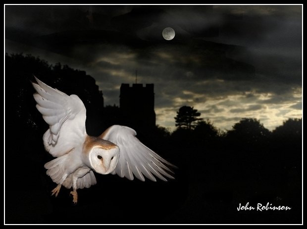 Photograph Night flight  by John Robinson on 500px