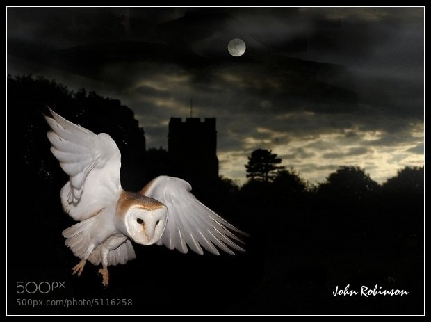 Photograph Night flight  by John Robinson on 500px