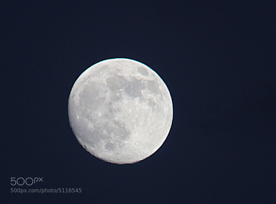 Photograph Moon by Robert Miller/As Eye See It Photography on 500px