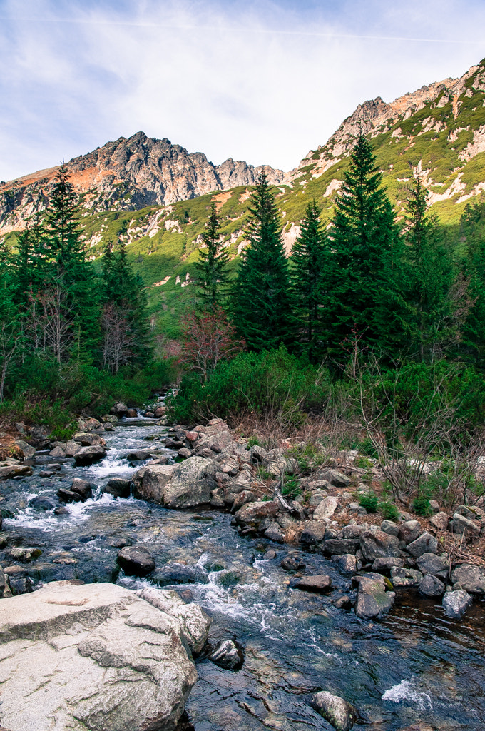 Photograph Tatry by Robert Bryl on 500px