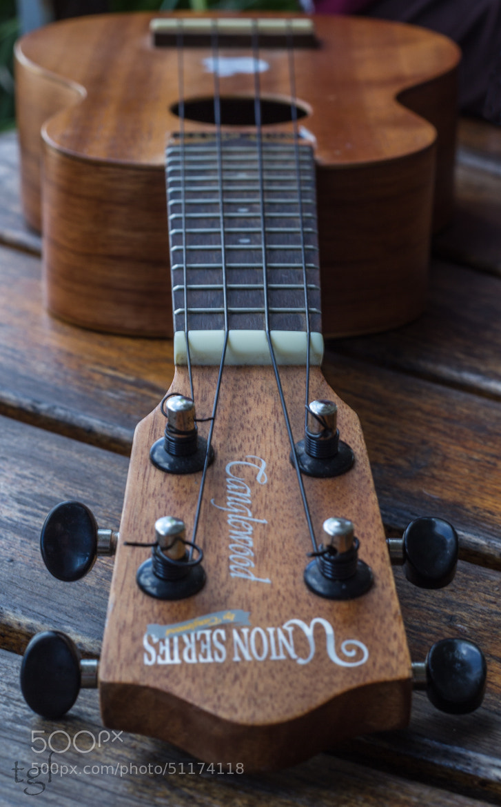 Photograph Guitar by Trevor Gensch on 500px