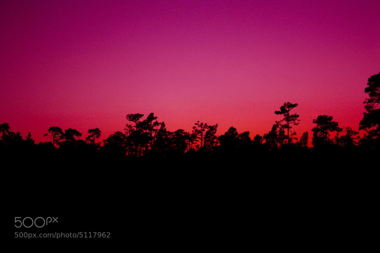 Photograph a pink sun set by Daniel  Carreño on 500px