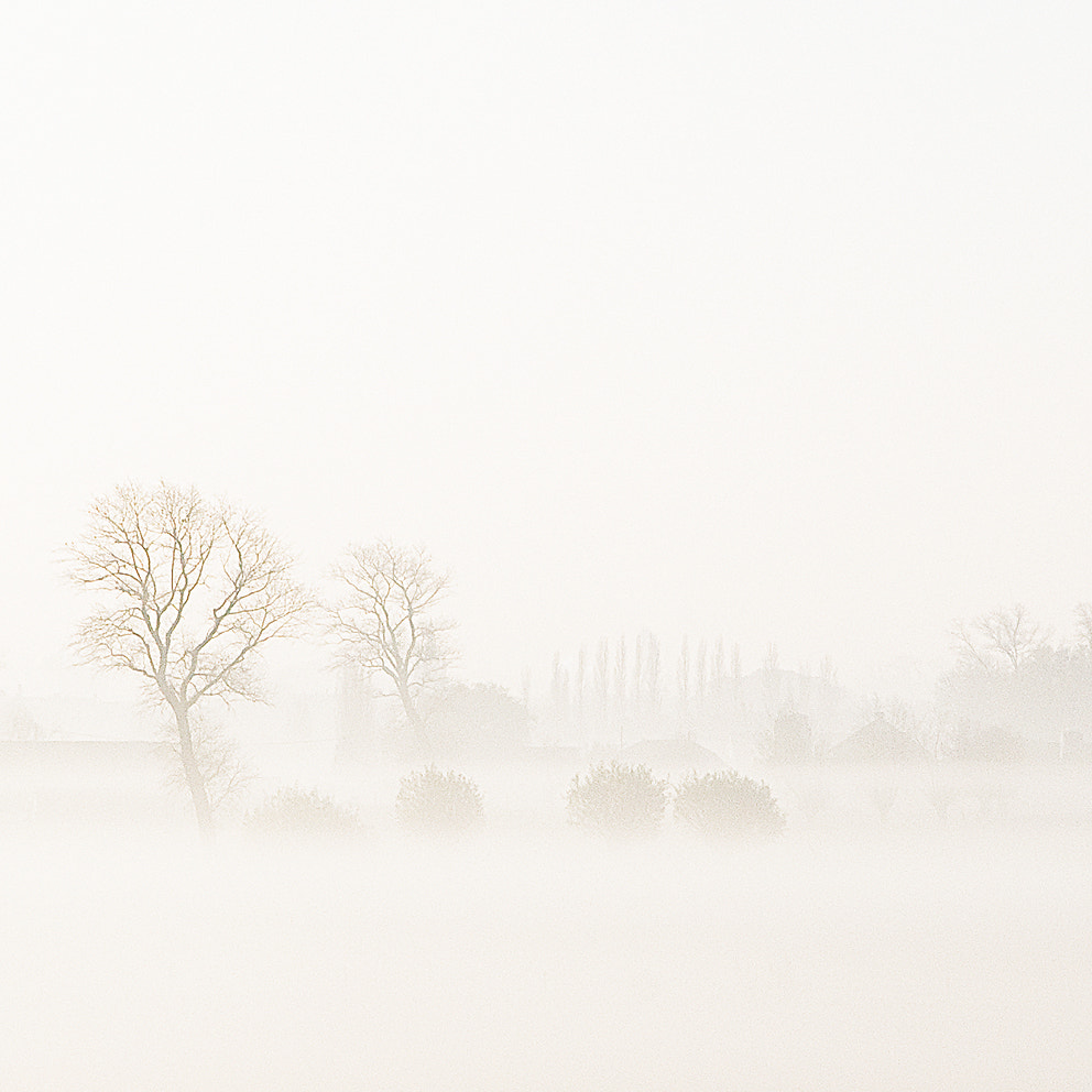 Photograph A misty morning by Pascale schotte on 500px