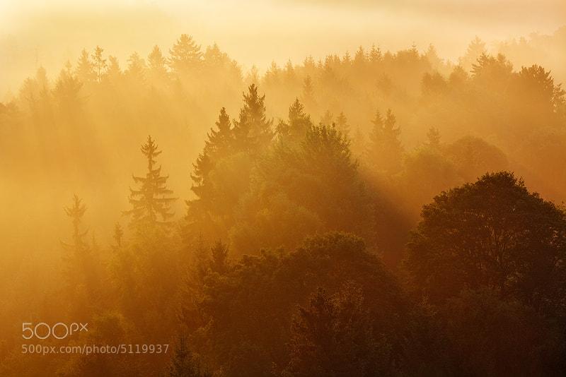 Photograph Warming Light by Martin Rak on 500px