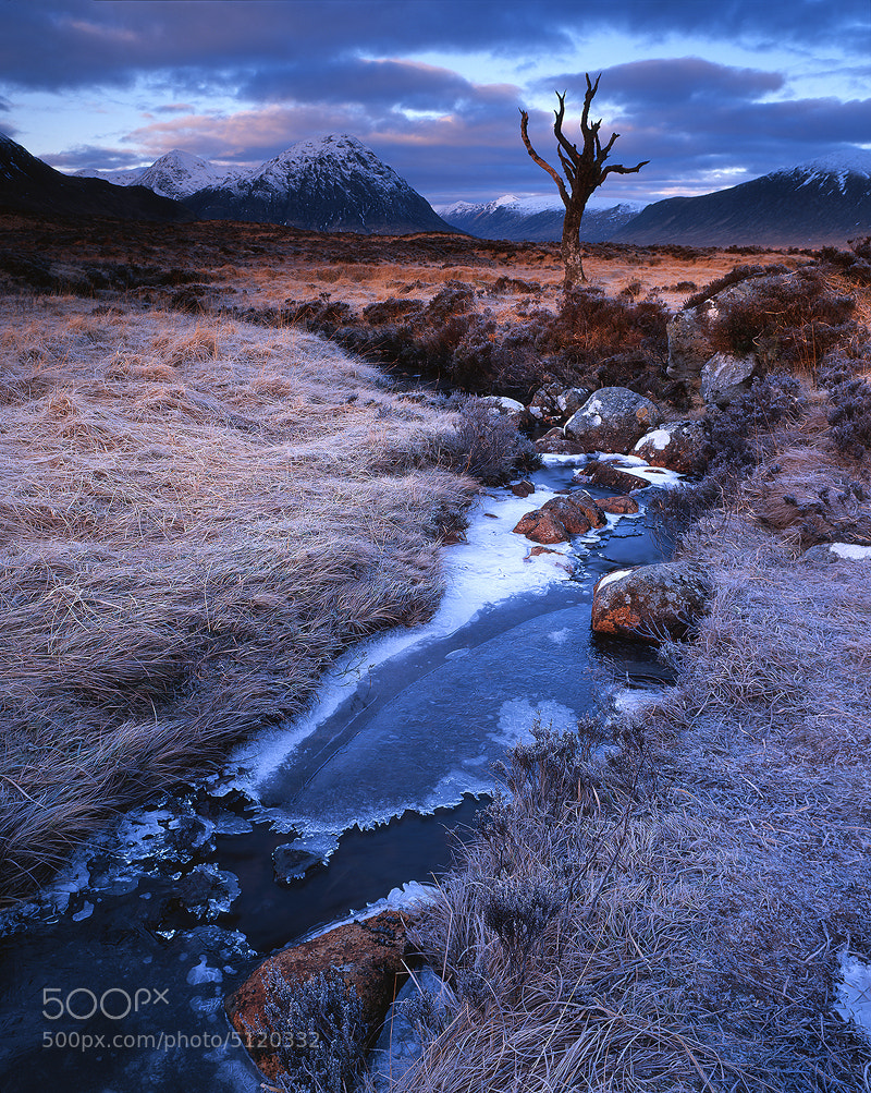 Photograph Dawn, Rannoch Moor by Edward Fury on 500px