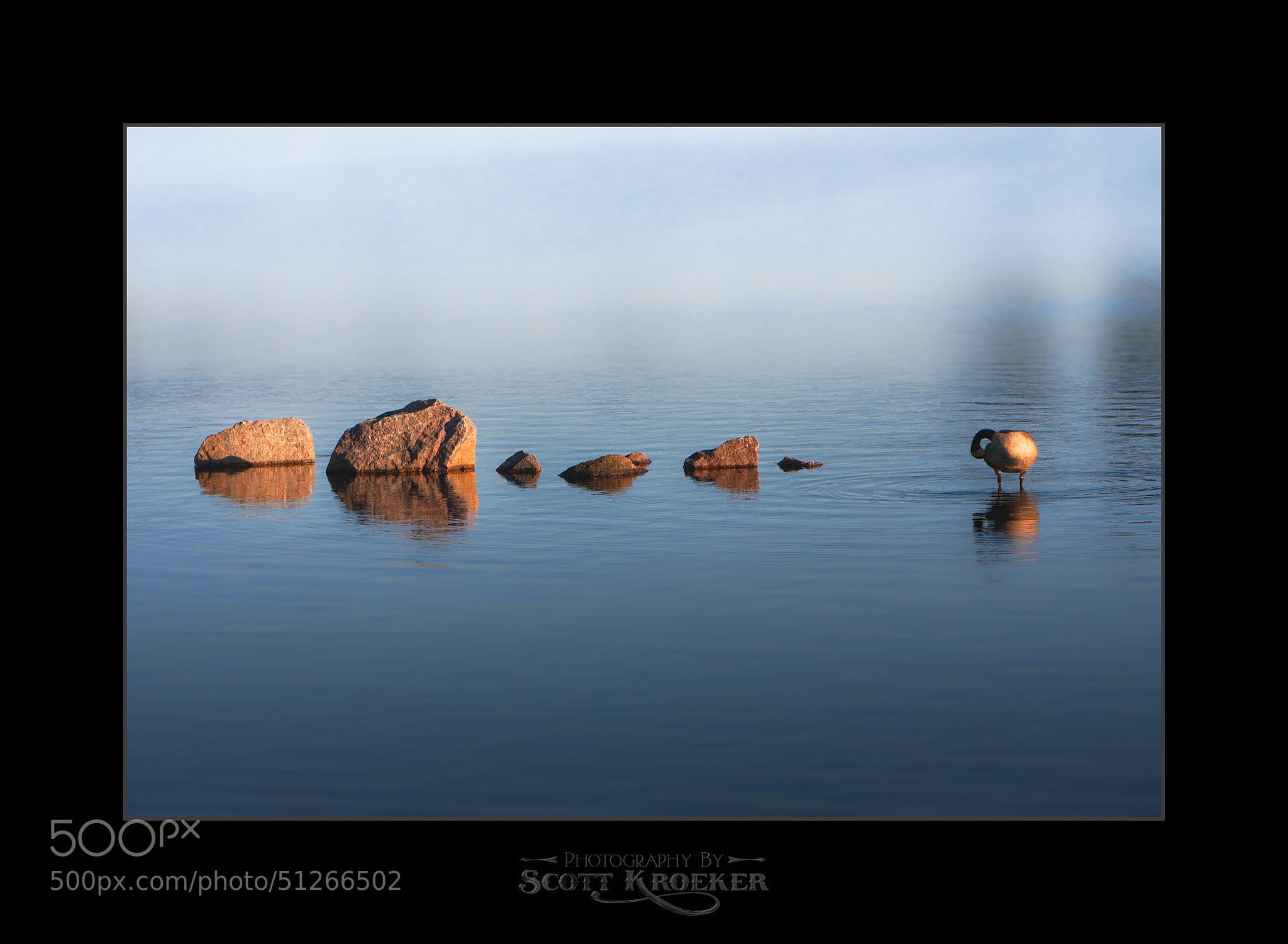 Photograph Make Like A Rock by Scott Kroeker on 500px