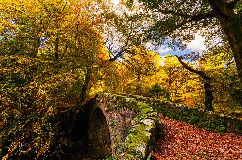 Photograph Build A Bridge by Alan Owens on 500px