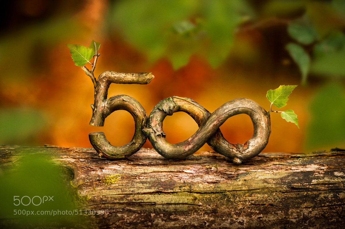 Photograph 500px by pawel pietrzyk on 500px