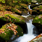 A brook from the Roaring Fork Creek in the fall. Smokey Mountains National Park, Tennessee