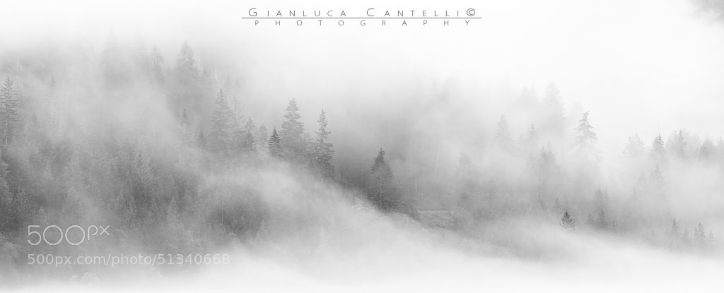 Photograph White Wave by Gianluca Cantelli on 500px