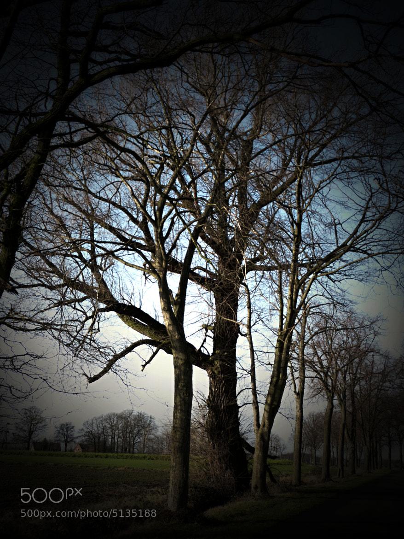 Photograph auf Motivsuche by Stefanie Feldhaus on 500px