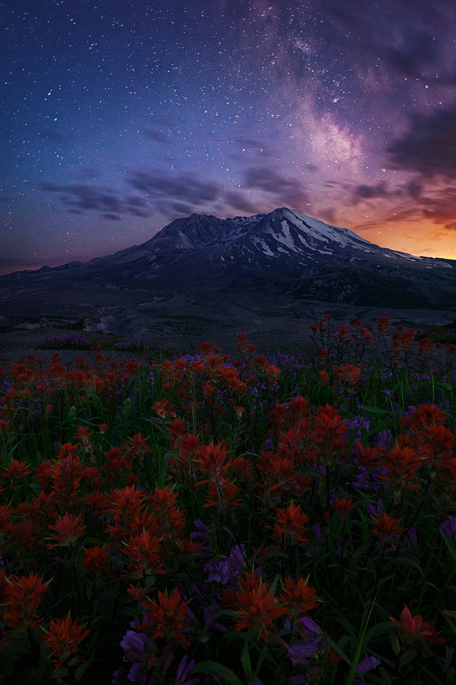 Photograph Heaven Can Wait by Miles Morgan on 500px