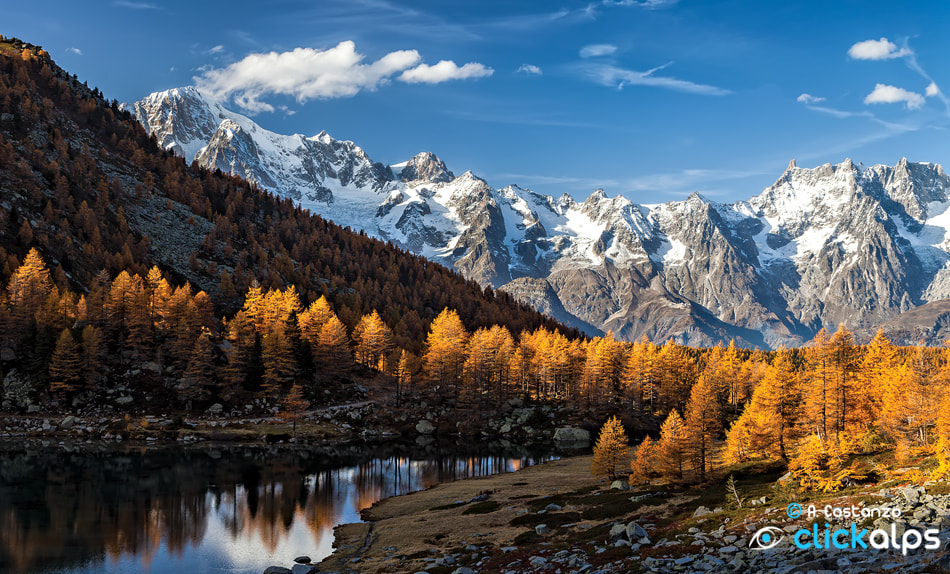 Photograph Autumn in the Alps by Alfredo Costanzo on 500px
