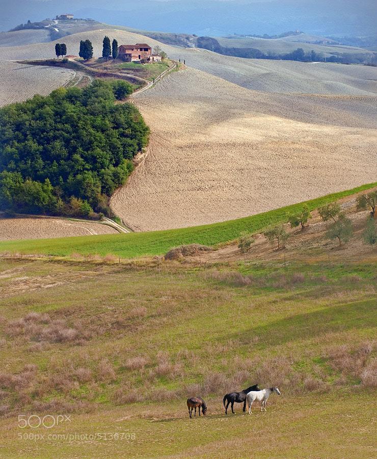 Photograph Tuscany by Jure Kravanja on 500px