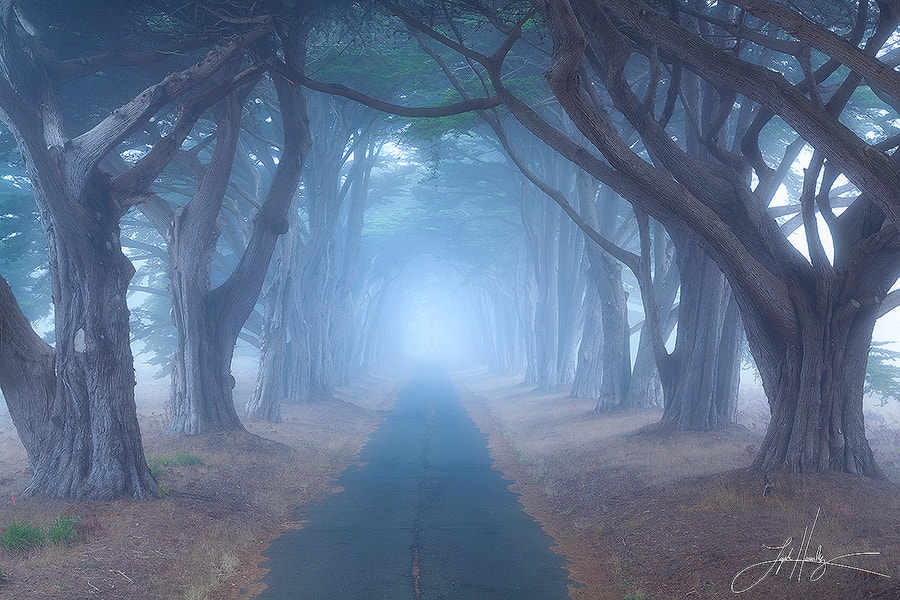 Photograph Sleepy Hollow by Lijah Hanley on 500px