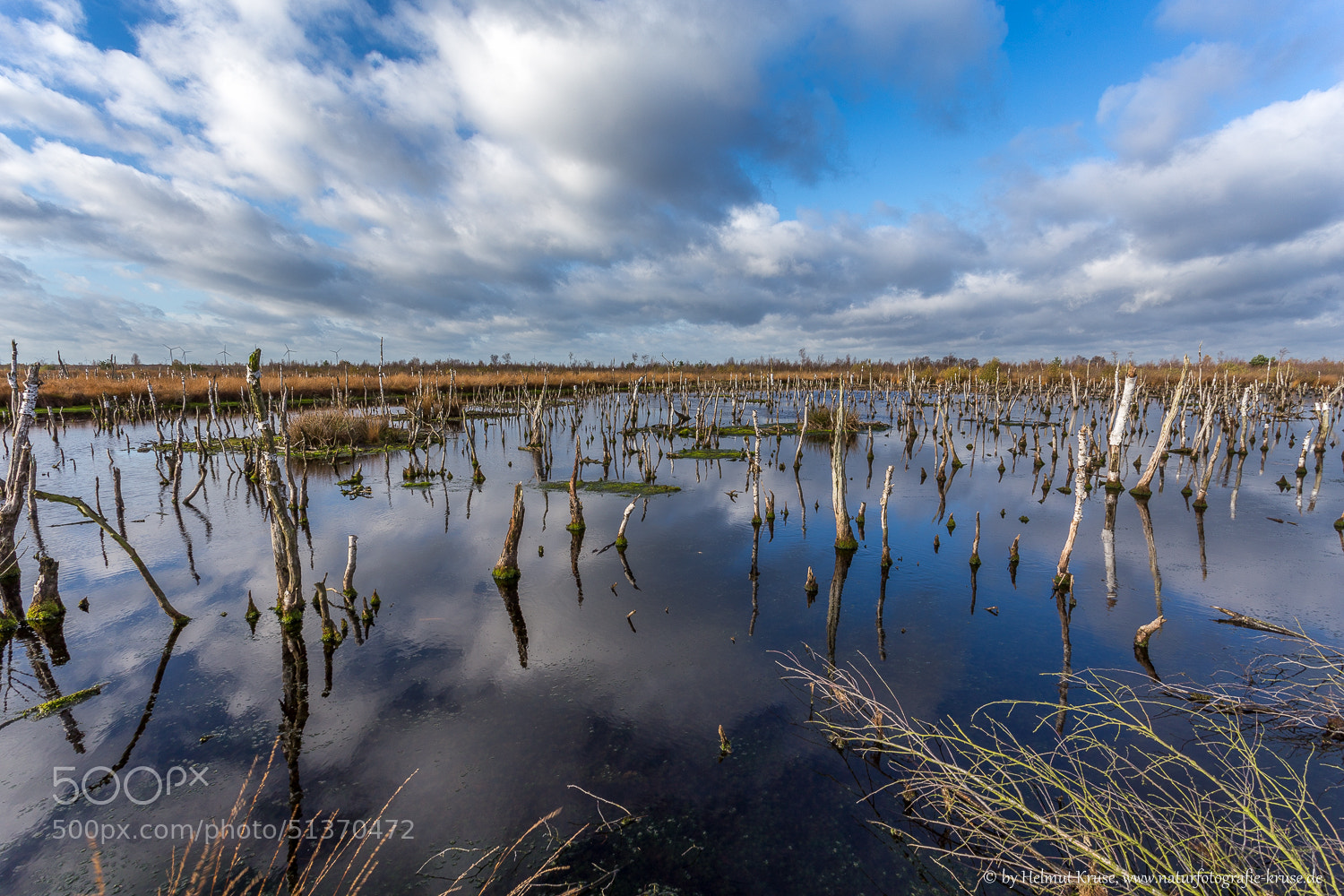 Photograph Moor Landscape by Helmut Kruse on 500px