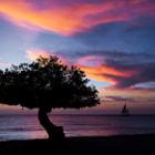 Sunset sailing in the Caribbean sea off the coast of Oranjestad, Aruba.