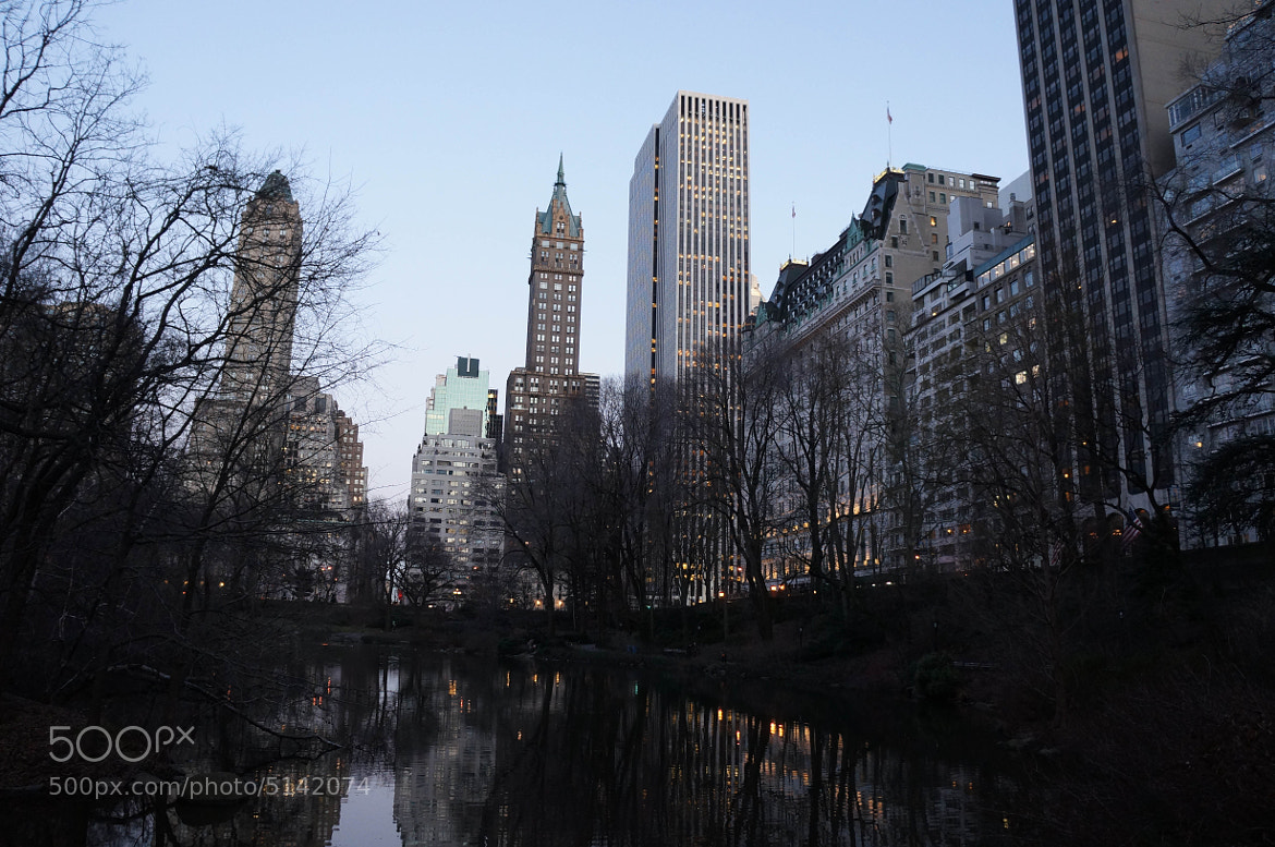 Photograph Central Park Skyline by Peter Wu on 500px
