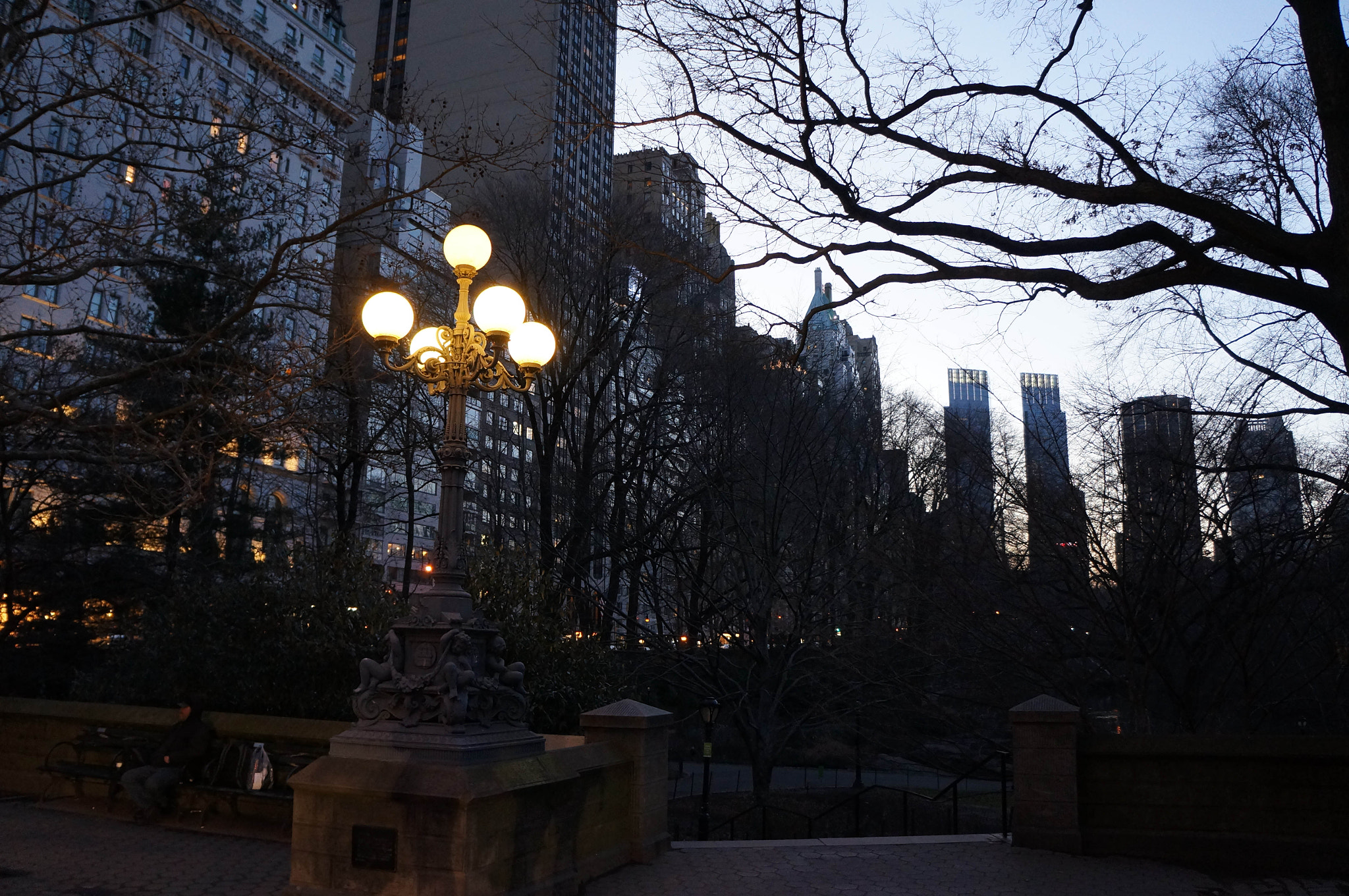 Photograph Central Park Twilight by Peter Wu on 500px