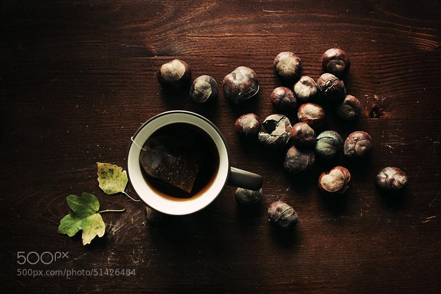 Photograph autumn melancholy by Katja Kemnitz on 500px