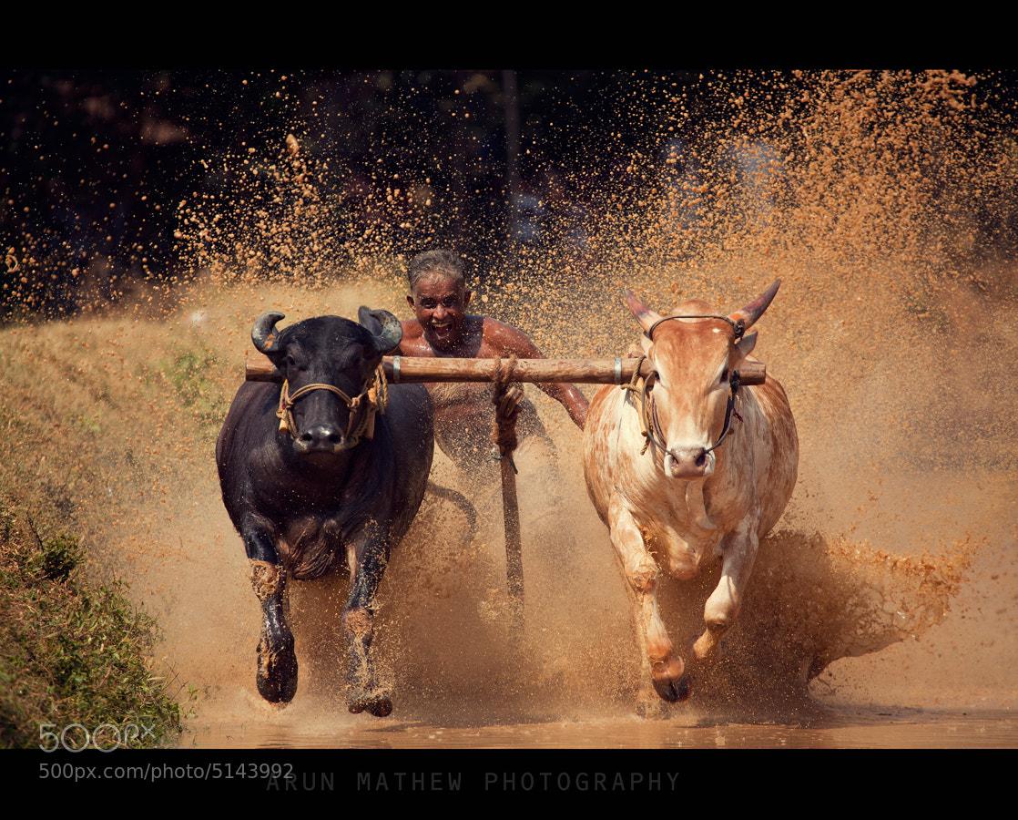 Photograph Got speed? by Arun Mathew on 500px