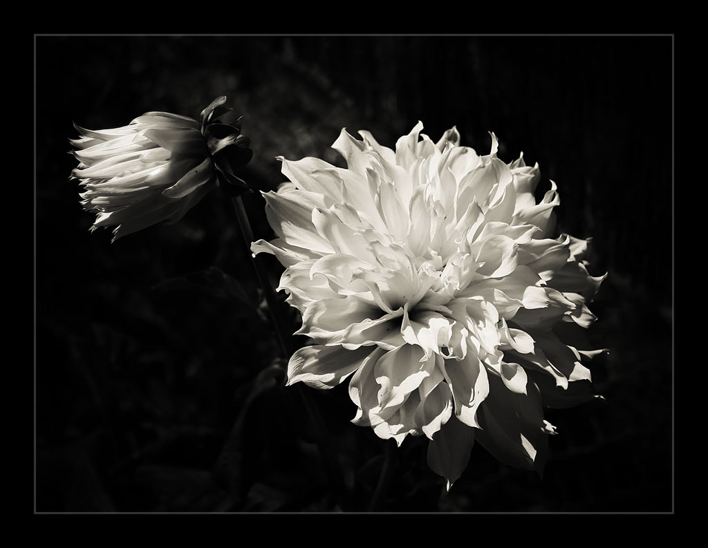 Photograph Luces y sombras by Isabel  López on 500px