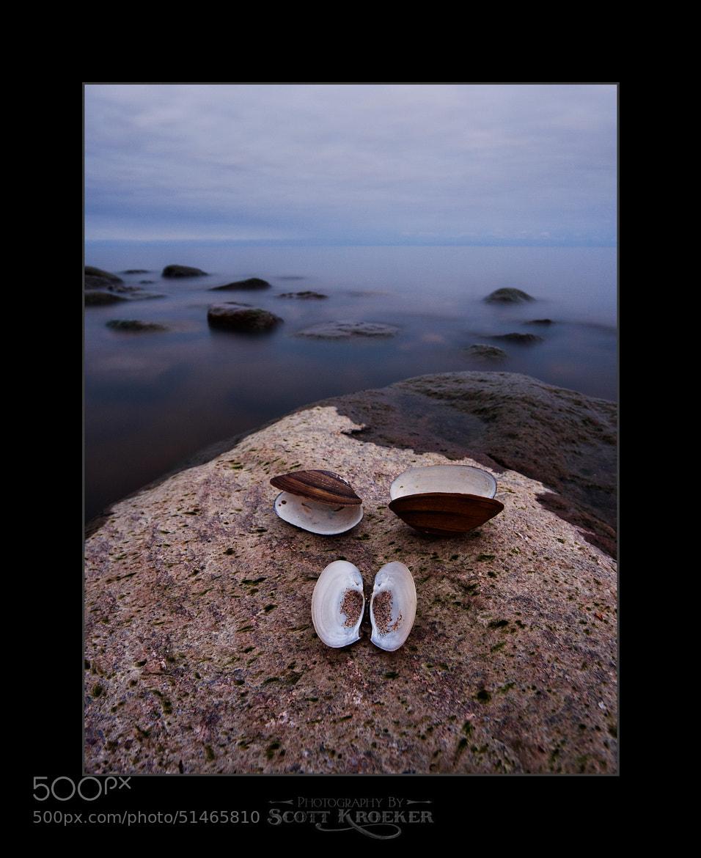 Photograph 3 Shells by Scott Kroeker on 500px