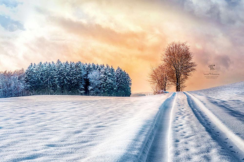 Photograph wintertime is not far? by René de Brunn on 500px