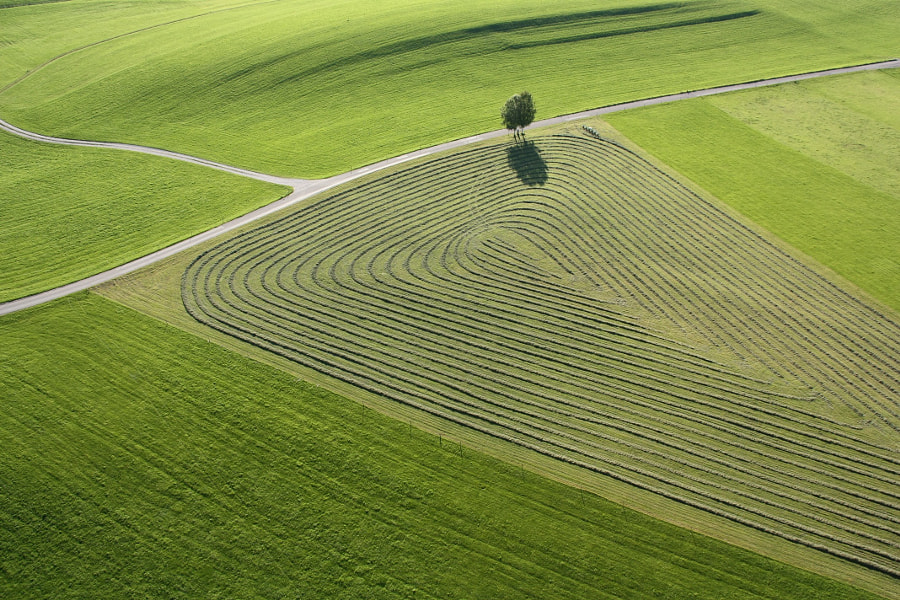 The Art of Mowing by Markus Huber on 500px.com