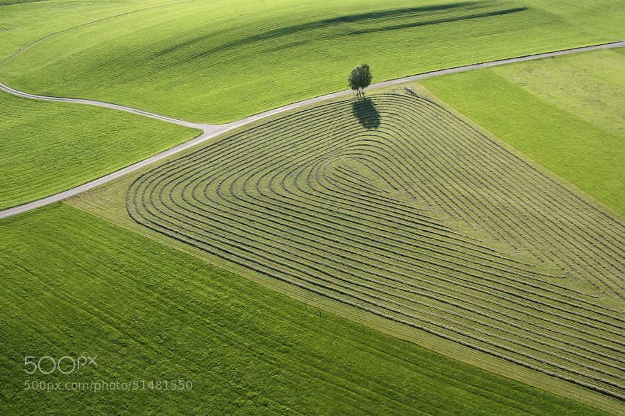 Photograph The Art of Mowing by Markus Huber on 500px