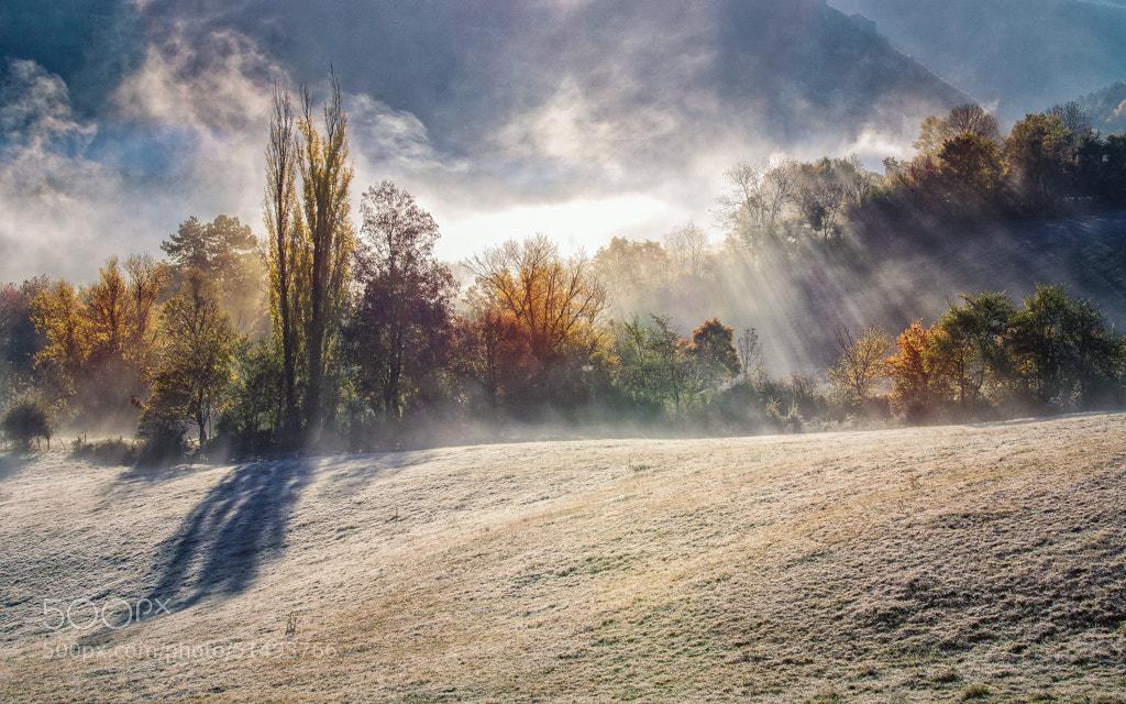 Photograph Autumn by Bastien HAJDUK on 500px