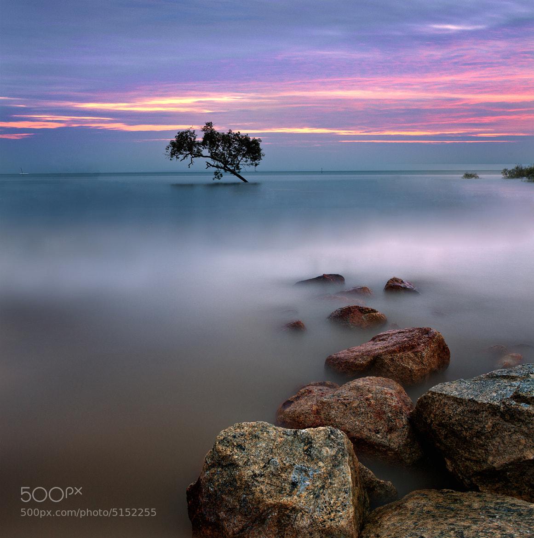 Photograph Pantai Morib Malaysia by lim theam hoe on 500px