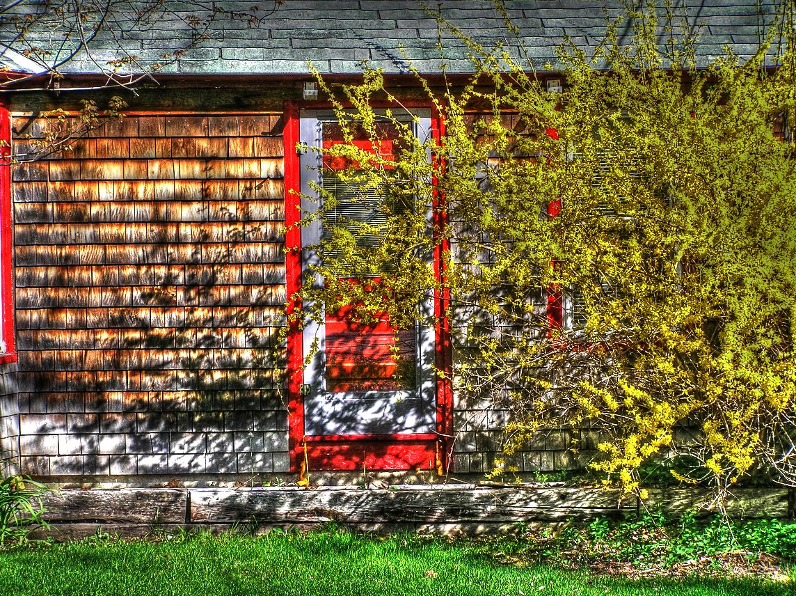 Photograph Red Door by Pratik  on 500px