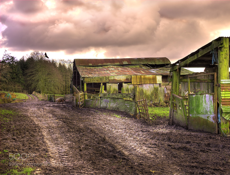 Photograph Decaying British Farming  by Ryan Addis on 500px