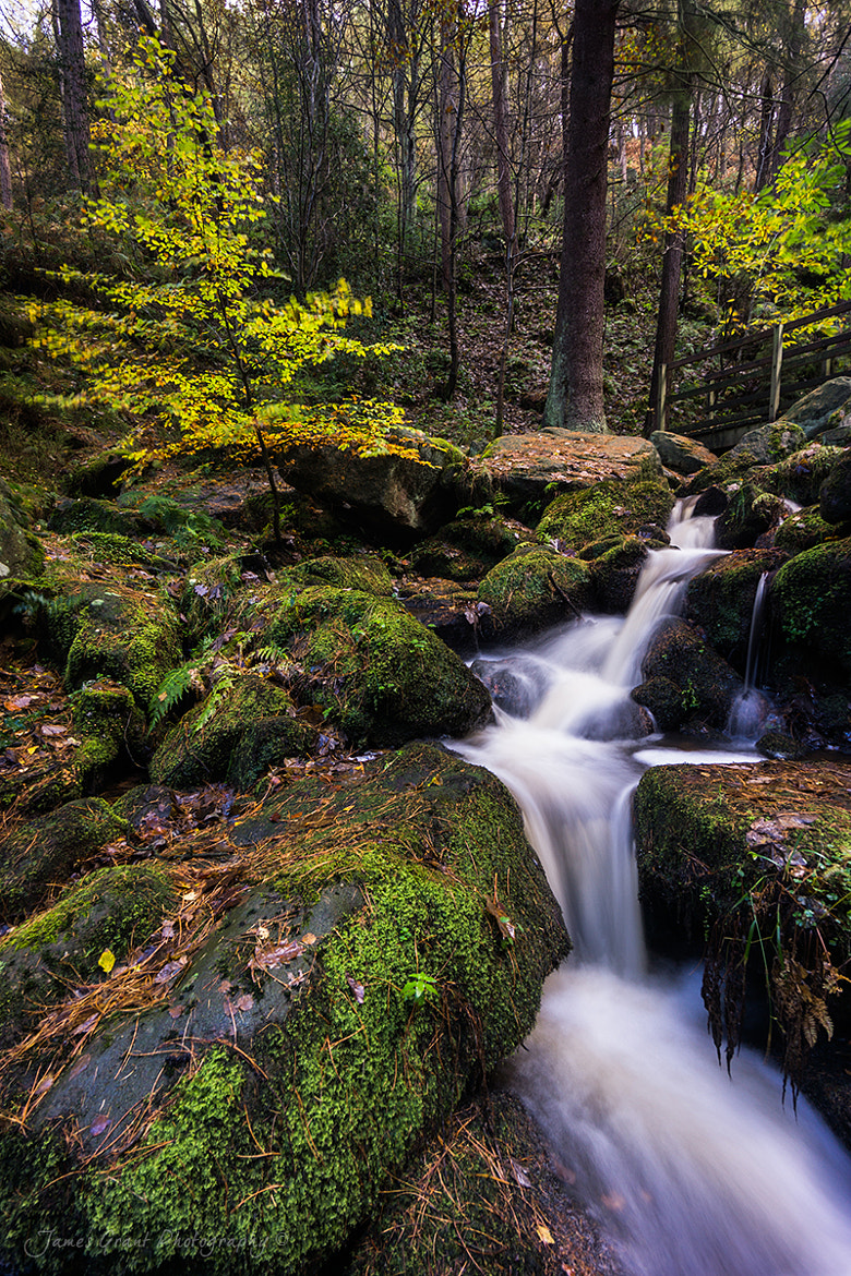 Photograph Wyming Brook by James Grant on 500px