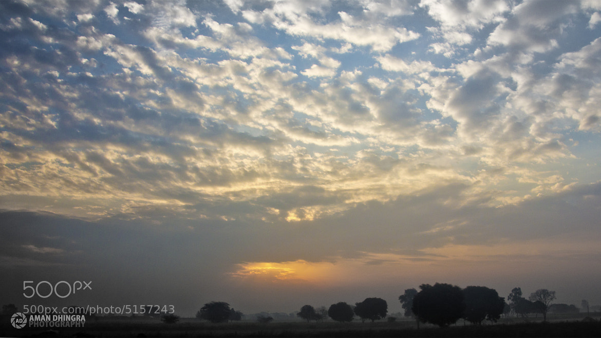 Photograph Untitled by Aman Dhingra on 500px