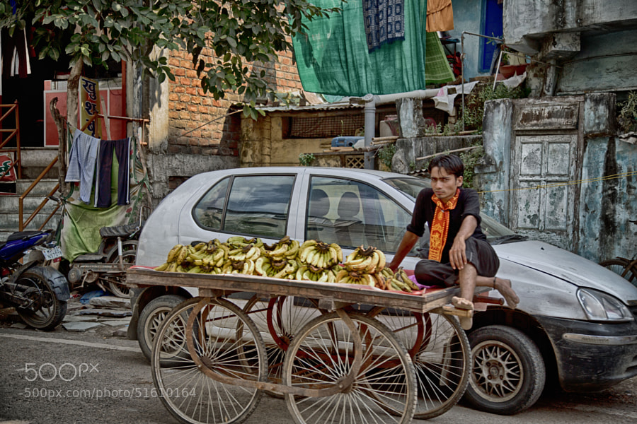 Digital color HDR image of a man sitting on a cart full of bananas in Indore, India