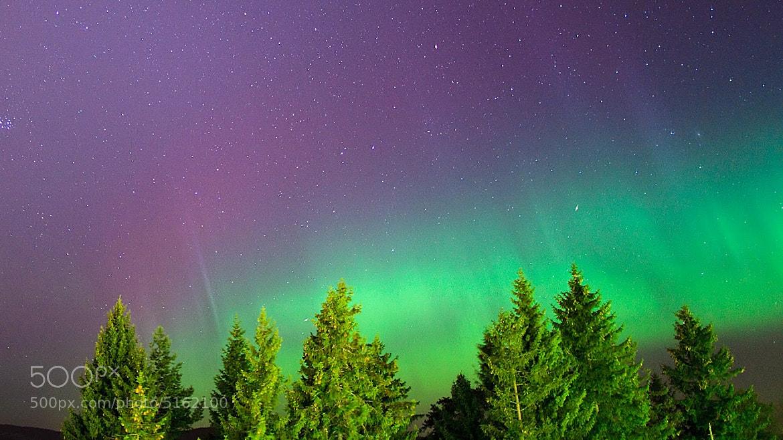 Photograph Aurora Borrelealis by Morten Berg on 500px