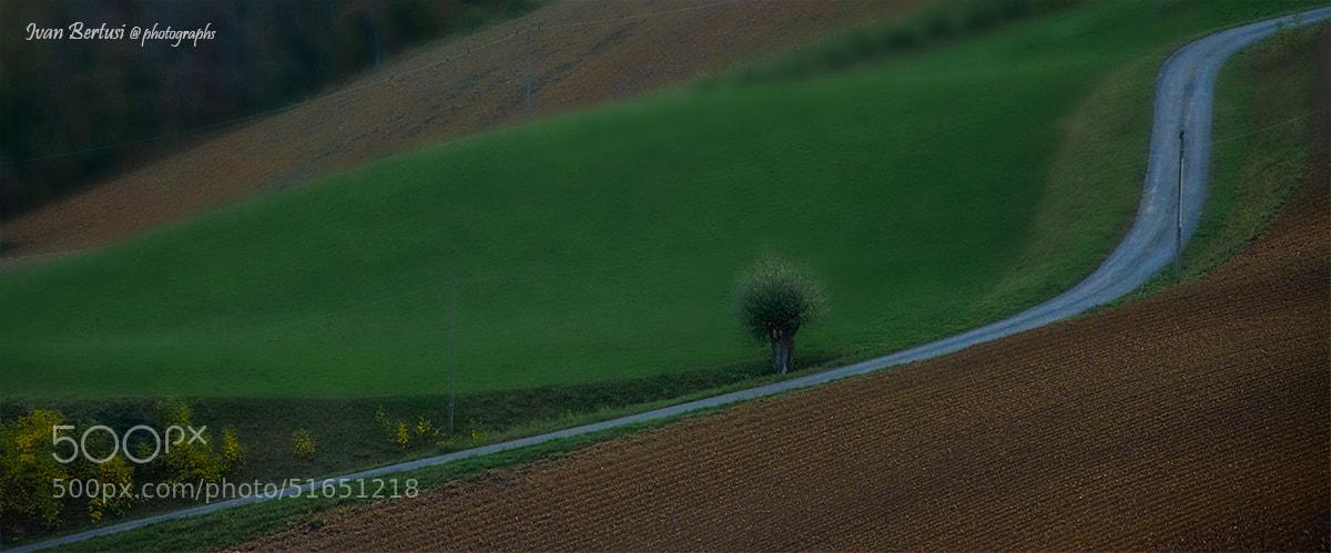 Photograph Sul confine by Ivan Bertusi on 500px