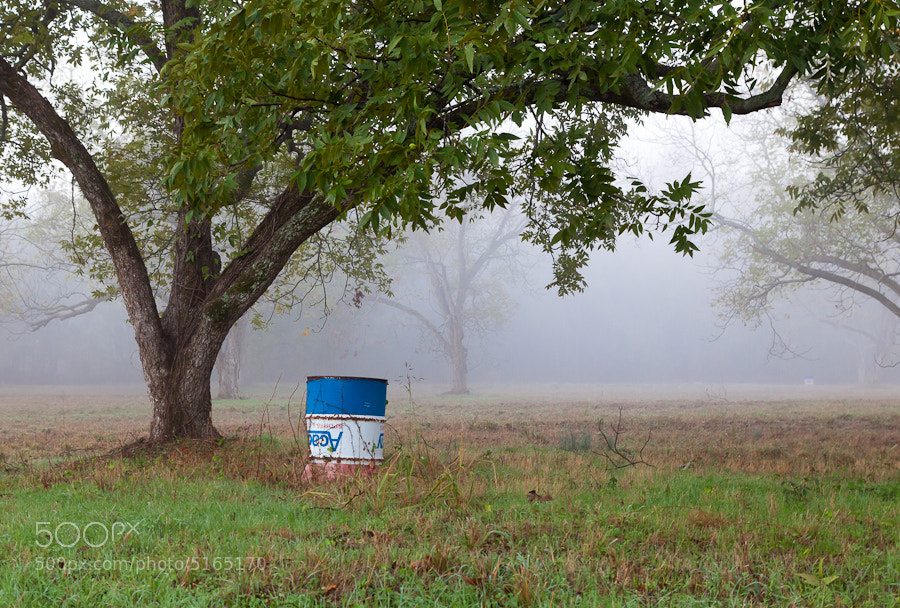 Photograph Barrel Under the Pecan Tree, Flint, Texas. by Stanton Champion on 500px