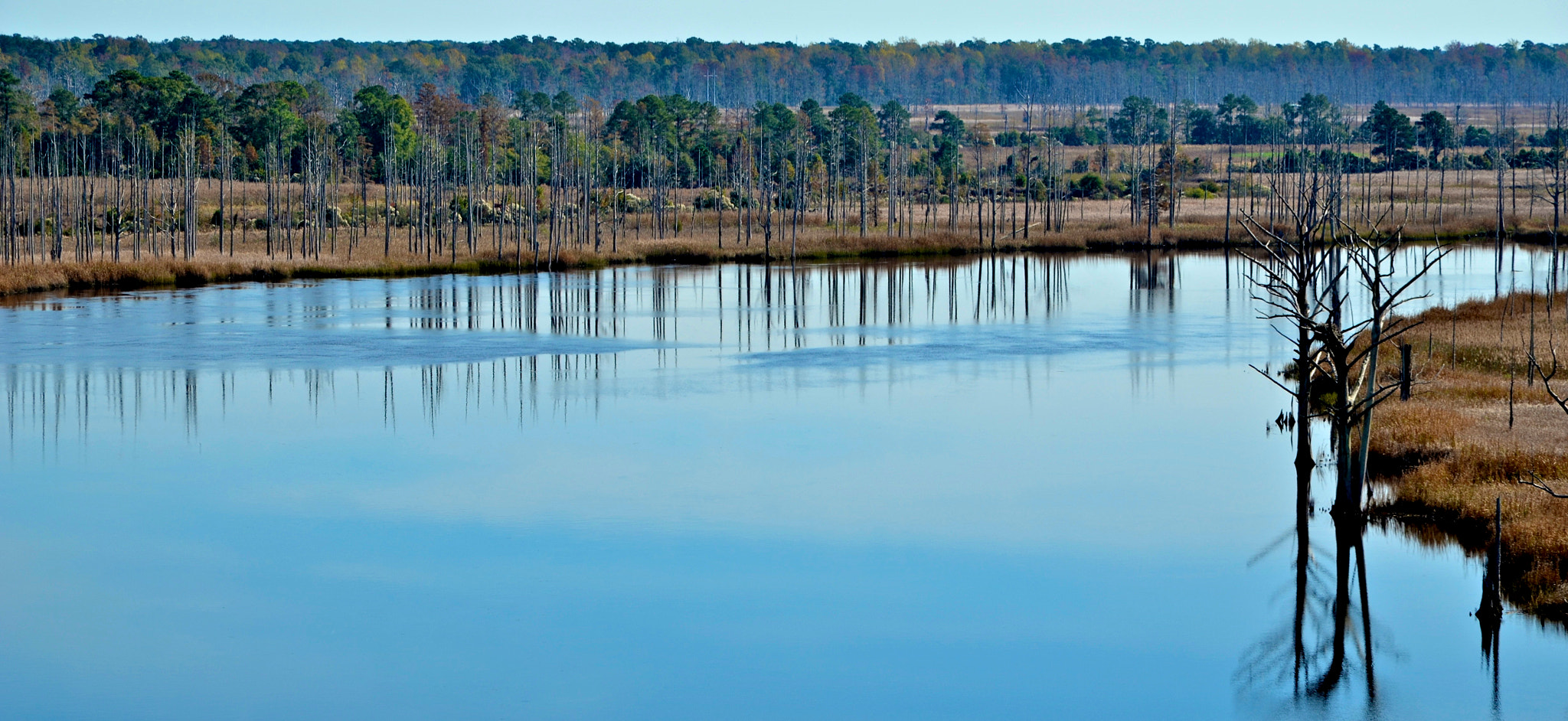 Photograph A Bend in the River by Mike Melnotte on 500px