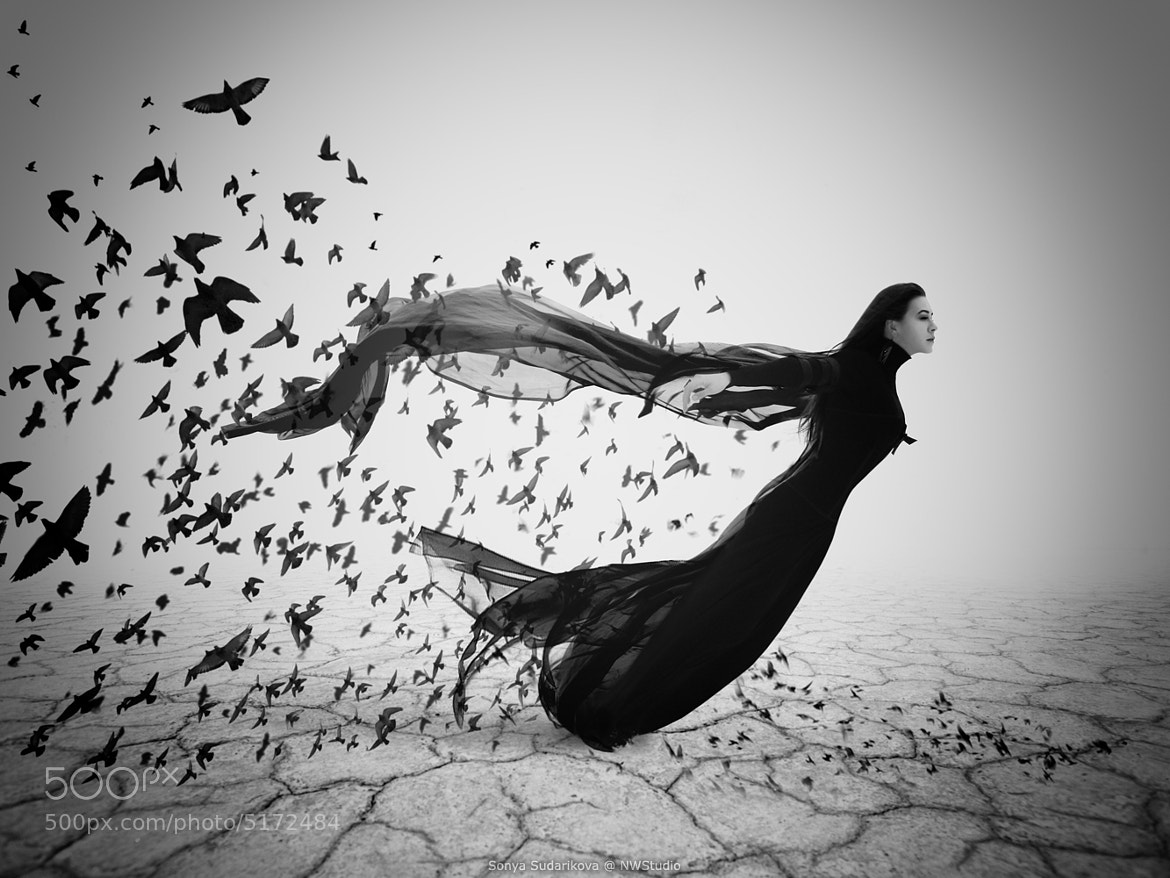 Photograph The Flight by Sophia Sudarikova on 500px